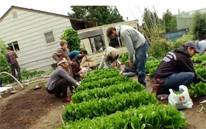 Post image for Farming in the City: Joys of Growing Food
