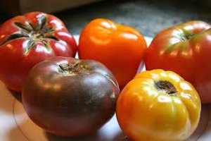 Post image for Arkansas farmers see growing market in heirloom tomatoes