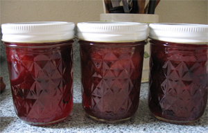 Post image for Secrets to Foolproof Local, Seasonal Jams