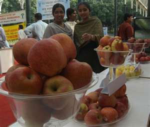 Post image for Import of Chinese apples a threat to HP growers