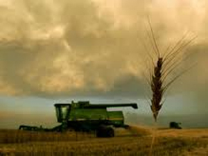 Post image for The Star's editorial | Agriculture offers a harvest of budget cuts
